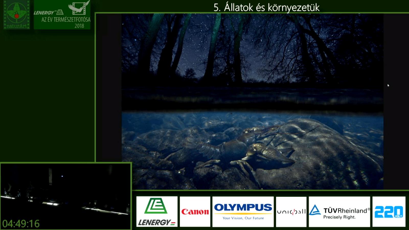 Az Év Természetfotósa 2019 zsűrizés döntője, végső fordulójának felvétele