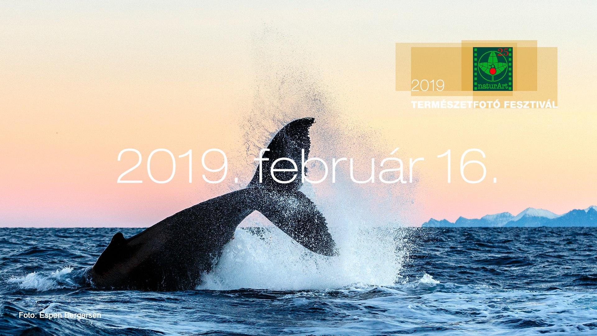 Teltház: naturArt – Természetfotós Fesztivál 2019